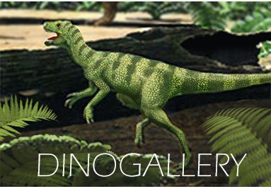 dinostore_eoraptor