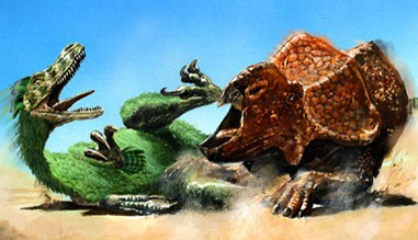 dinostore_velociraptor_vs_protoceratops